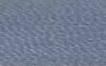 Hilos de Bordado de Poliéster C13 - color-379